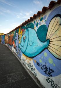 Piran grafiti