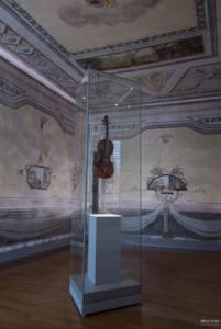 Violina Tartini